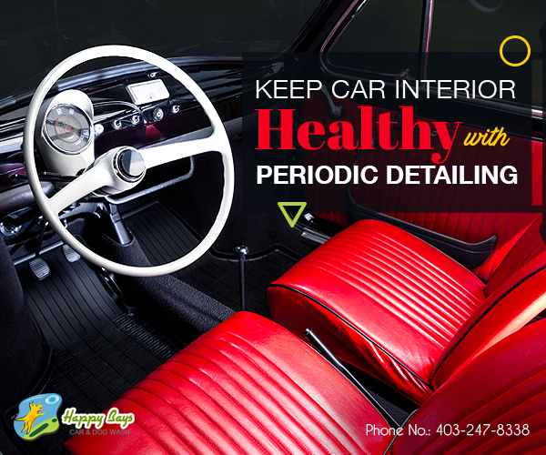 interior car cleaning