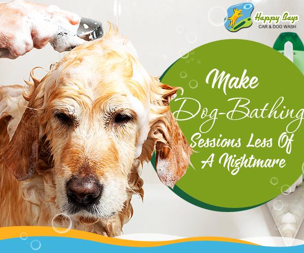 dog wash calgary