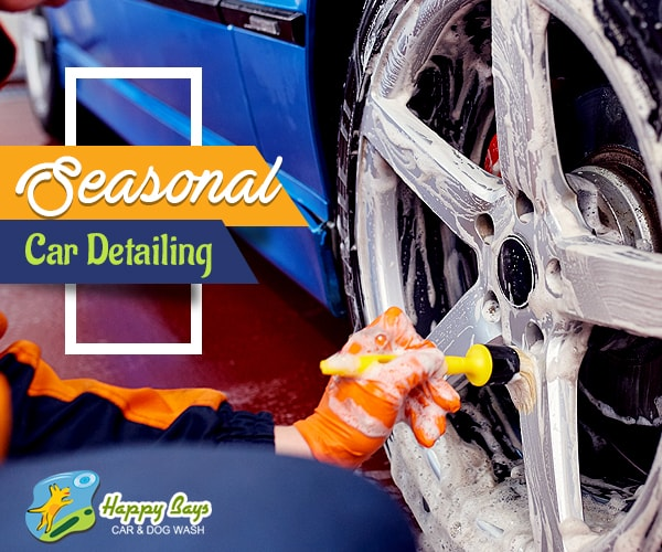 Seasonal Car Detailing